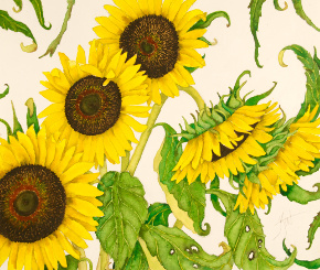 For the Lover of Sunflowers - Kat Block